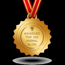 Animal-transparent_216px