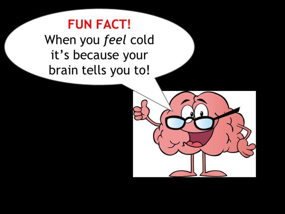 brain talks